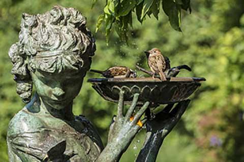 Gartenbau natuerlich